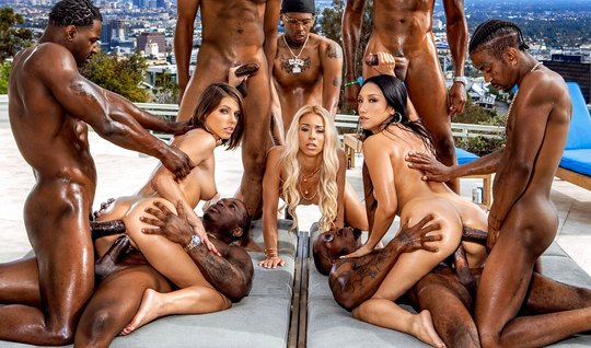 A real Orgy with blacks completed the double penetration and orgasm...