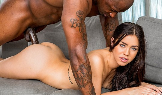 Negros Vibel sexy brunette big dick